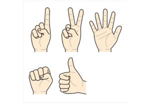 手の動きセット